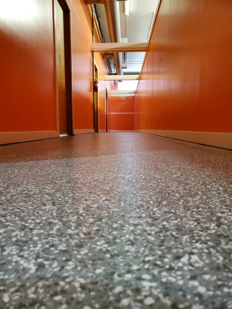 Doggie Daycare concrete floor coating